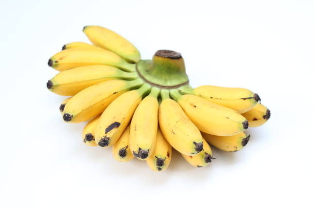 Banana Prata 6