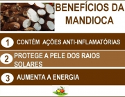 Beneficios da Mandioca 6