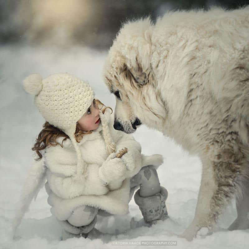 Crianças Pequenas Com Animais 6