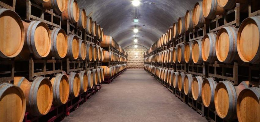 Fabricação de Vinhos 5