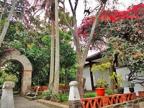Jardim Botânico Atocha-La Liria 1