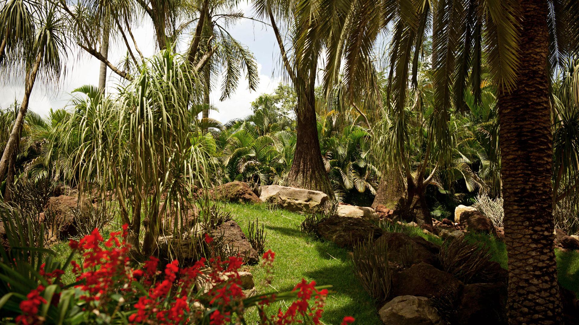 Jardins Florestais 5
