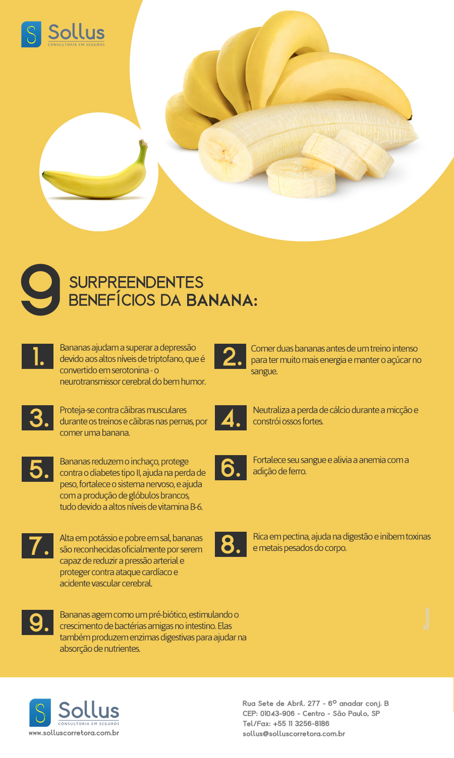 Nutrientes da Banana 3