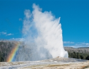 Old Faithful 5