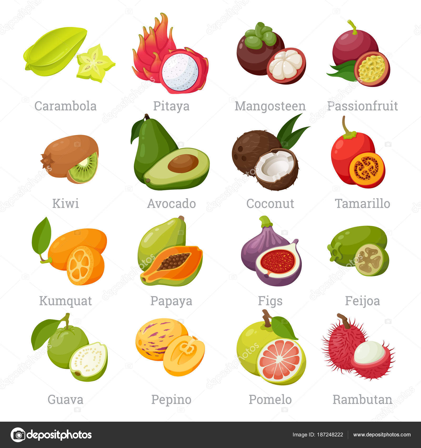 Exotic tropical fruits set with names