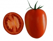 Tomate 5