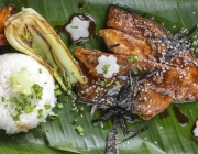 Unagi filet with Vegetable and Rice