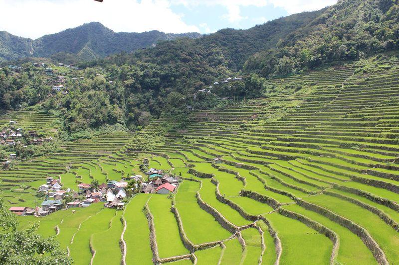 Terraços de Arroz nas Filipinas