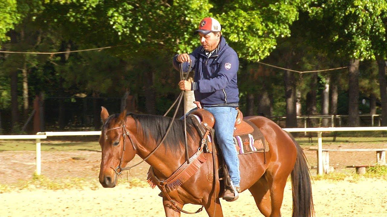 A Importância da Sela no Cavalo