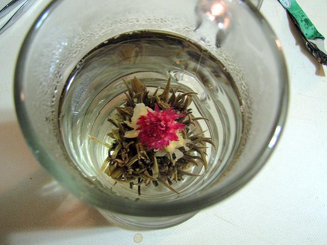 Chá da Flor-de-Cone