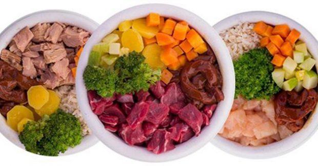 Alimentação Natural para Chow Chow
