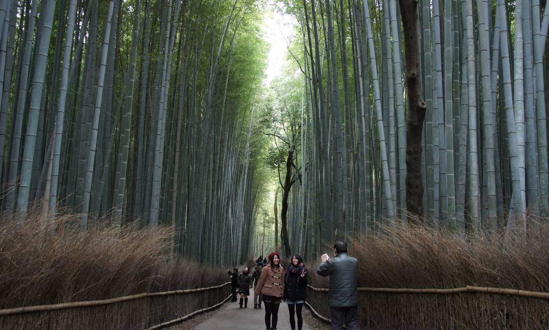 Bambu no Japão